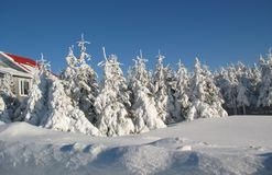 Scène de l'hiver photographie stock