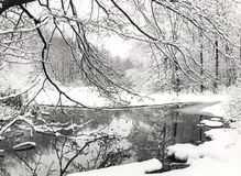 Scène de l'hiver Image stock