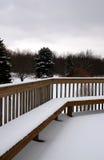 Scène de l'hiver au Michigan Photographie stock libre de droits