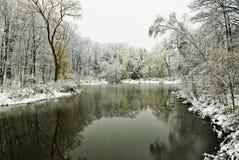 Scène de l'hiver avec l'étang et les arbres Image stock