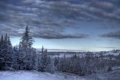 Scène de l'hiver avec les cieux déprimés Images libres de droits
