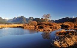 Scène de l'hiver de lac de pitt Image libre de droits