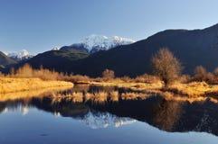Scène de l'hiver de lac de pitt Images libres de droits