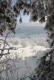 Scène de l'hiver en Bulgarie Image libre de droits