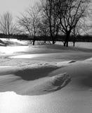 Scène de l'hiver en noir et blanc Images libres de droits