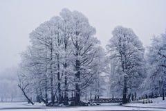 Scène de l'hiver en stationnement photos stock