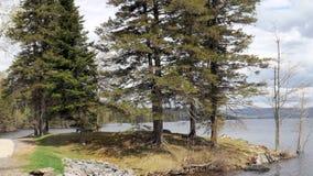 Scène de lac Image libre de droits