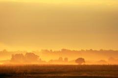 Scène de lever de soleil Images libres de droits