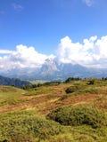 Scène de montagne Image stock