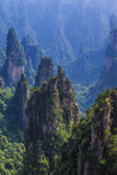 Scène de montagne de roche à Zhangjiajie Forest Park national, Hunan Photos stock