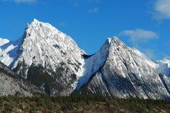 scène de montagnes de source Images libres de droits