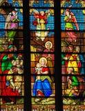Scène de nativité à Noël dans la cathédrale de St Patrick, NYC Image libre de droits