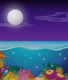 Scène de nature avec le fullmoon au-dessus de l'océan Photographie stock