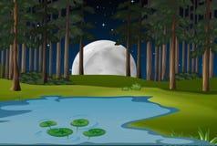 Scène de nature avec le fullmoon et l'étang dans la forêt Photos libres de droits