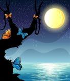 Scène de nature de silhouette la nuit de fullmoon Photos stock