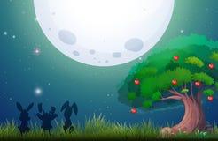 Scène de nature la nuit de fullmoon Image libre de droits