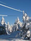 Scène de neige du Québec image stock