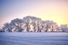 Scène de neige de lever de soleil de la Chine du nord-est Mudanjiang photographie stock libre de droits