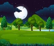 Scène de nuit avec le fullmoon en parc Photographie stock libre de droits