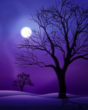 Scène de nuit de pleine lune Photo stock