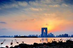 Scène de nuit de ville de PETITE GORGÉE de Suzhou Images stock