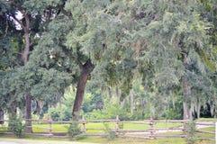 Scène de paysage avec les arbres et la barrière en bois Photo stock
