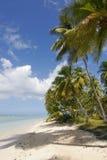 scène de plage tropicale Photographie stock libre de droits