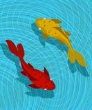Scène de poissons de Koi Photo stock