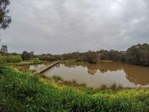Scène de pont de marécage et marais, Nouvelle-Galles du Sud, australie images libres de droits