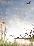 Scène de région sauvage sur le blanc Photographie stock libre de droits