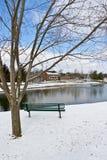 Scène de ville de l'hiver avec un banc près d'étang Photos stock
