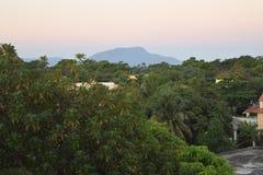 Scène des Caraïbes luxuriante Photo libre de droits