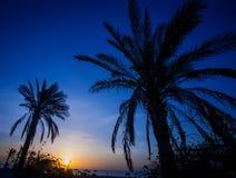 Scène divine de soirée de coucher du soleil Photos libres de droits