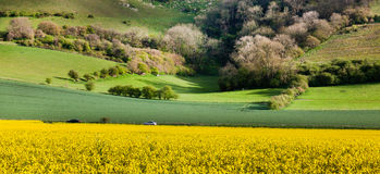 Scène le Sussex occidental image stock