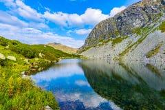 Scène met bergmeer royalty-vrije stock foto