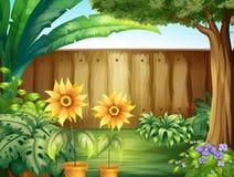 Scène met zonnebloemen in tuin stock illustratie
