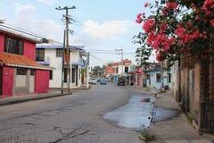 Scène mexicaine de rue photos libres de droits
