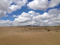 Scène mongole de désert Photo libre de droits