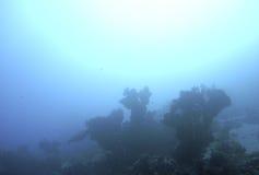 Scène mystérieuse de récif Photographie stock