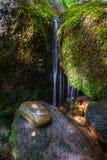 Scène, pierre et mousse de l'eau Photo libre de droits