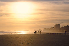 Scène rétro-éclairée de plage au coucher du soleil Photos libres de droits