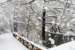 Scène-rivière neigeuse de beauté et flocons de neige énormes d'arbres Photo stock