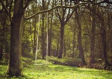 Scène romantique d'une oscillation pendant de la branche d'arbre Images libres de droits