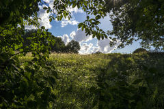 Scène rurale Photo stock