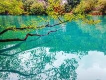 Scène stupéfiante du lac Plitvice, parc national de la Croatie Énuméré sur le patrimoine mondial de l'UNESCO Images libres de droits