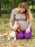 Scène tendre avec le propriétaire et l'animal familier Image stock