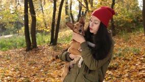 Scène tendre de femme avec le chien en parc d'automne clips vidéos