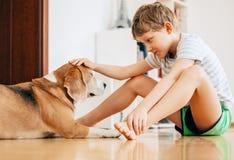 Scène tendre entre le garçon et le chien Photos libres de droits