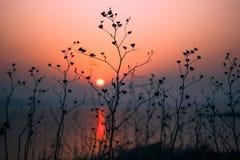 Scène tranquille de lever de soleil rouge paisible de matin Photographie stock libre de droits