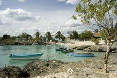 Scène tropicale Photographie stock libre de droits